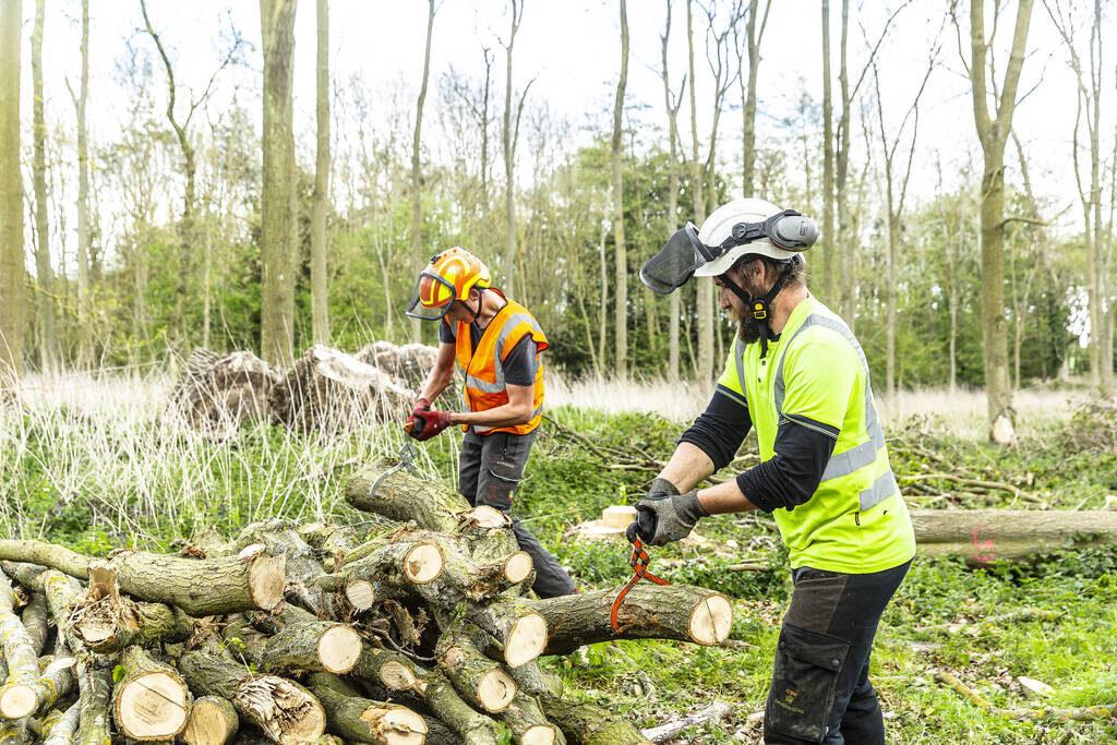 Shuttleworth Arboriculture part-time