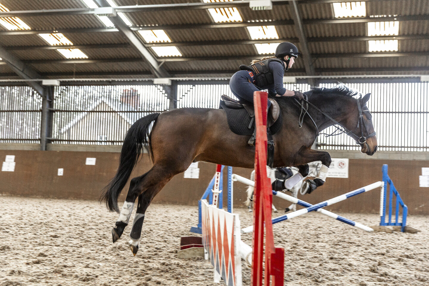 Equine horse jumping Shuttleworth College
