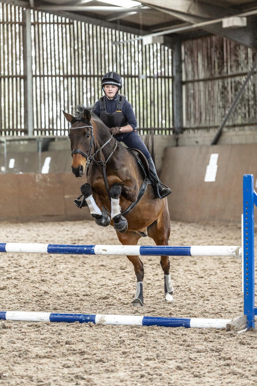 Equine horse training session Shuttleworth College