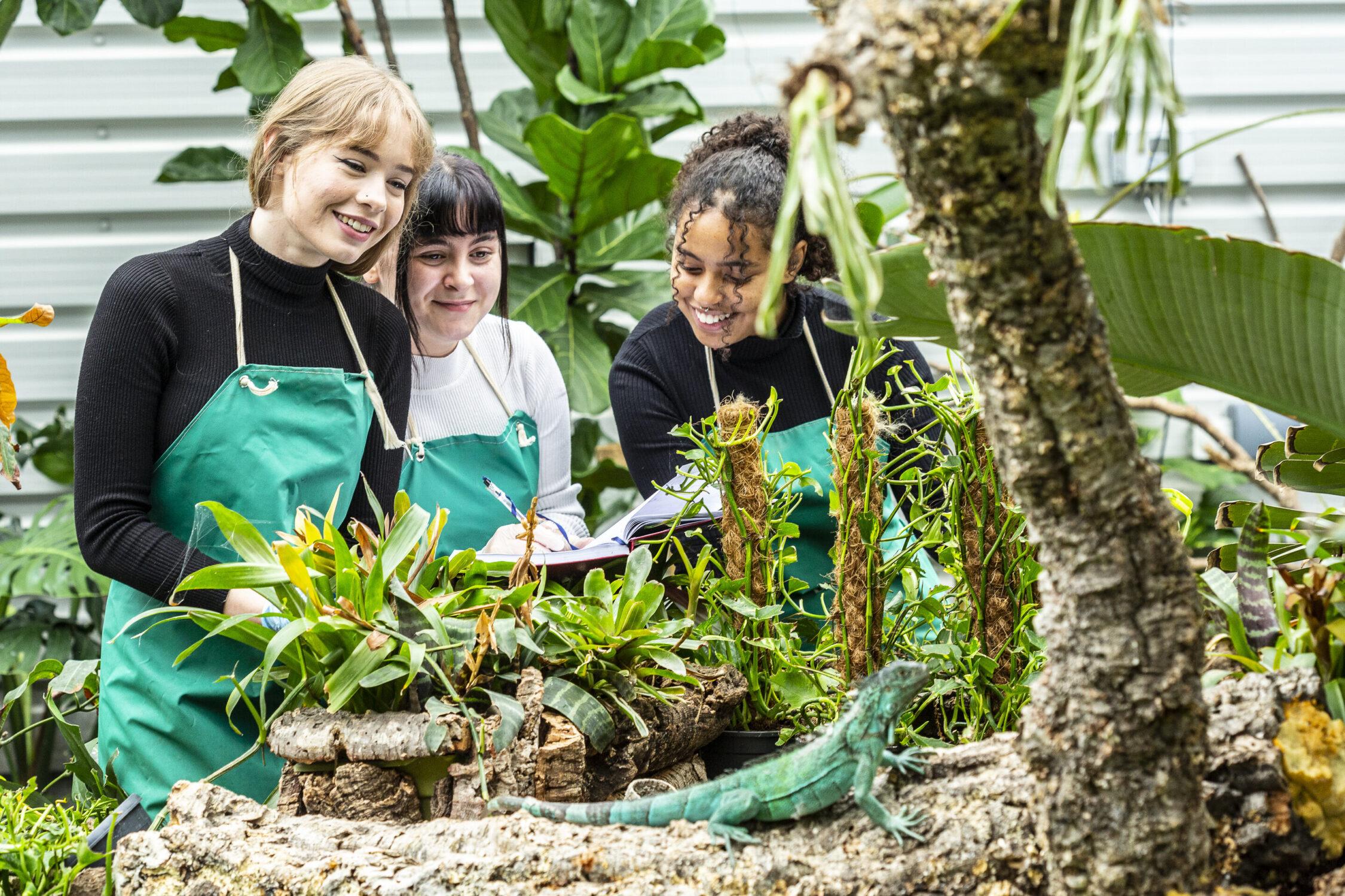 Animal Sciences Shuttleworth College Reptiles 2020